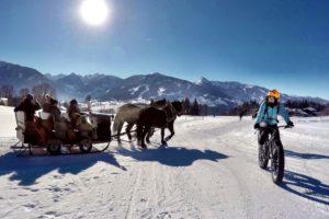 winterradfahrer-sklittenpferde